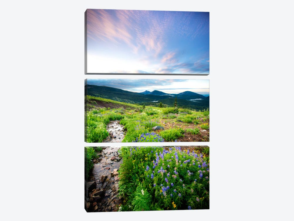 Crested Butte Stream Cavnas Print 3-piece Canvas Art