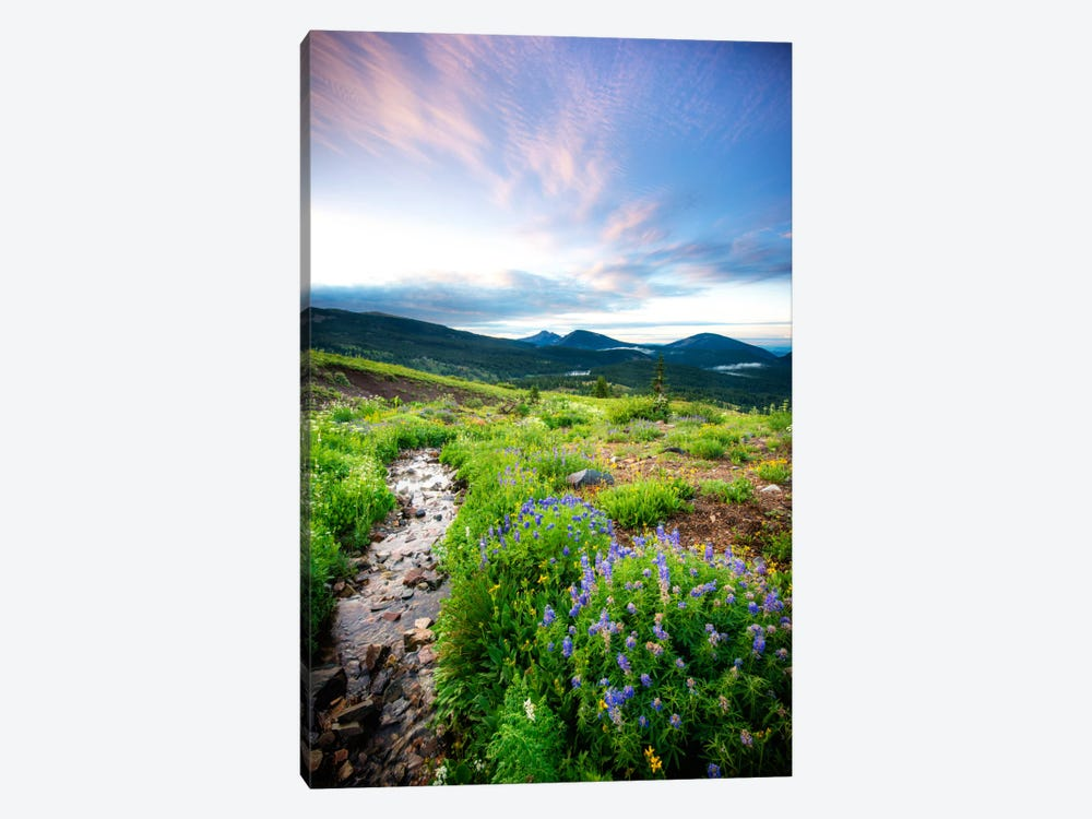 Crested Butte Stream Cavnas Print by Dan Ballard 1-piece Canvas Artwork