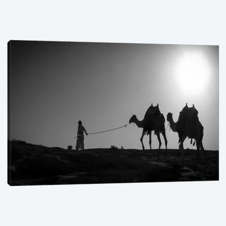Camel TripJordan Canvas Print #11559} by Dan Ballard Canvas Art Print
