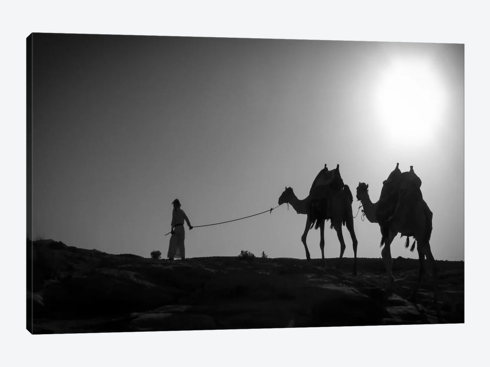 Camel TripJordan by Dan Ballard 1-piece Canvas Wall Art