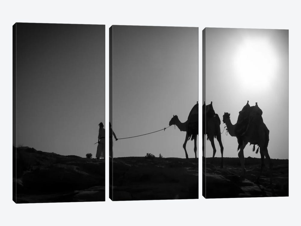 Camel TripJordan by Dan Ballard 3-piece Canvas Art