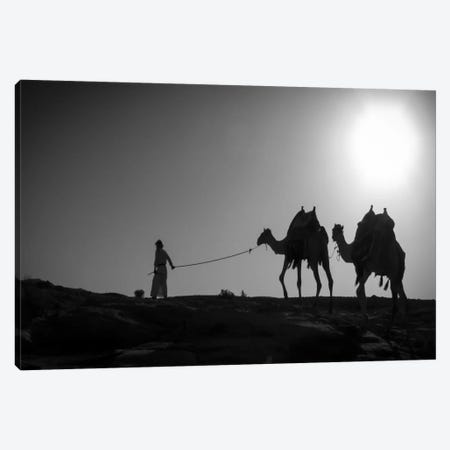 Camel TripJordan Canvas Print #11559} by Dan Ballard Canvas Art Print