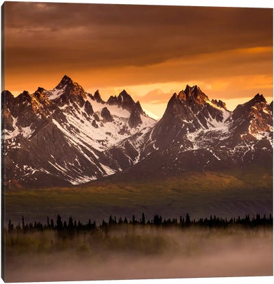 Devils Horns #2 Canvas Art Print