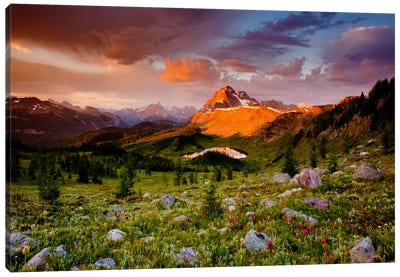 Emerging Glory by Dan Ballard Canvas Print