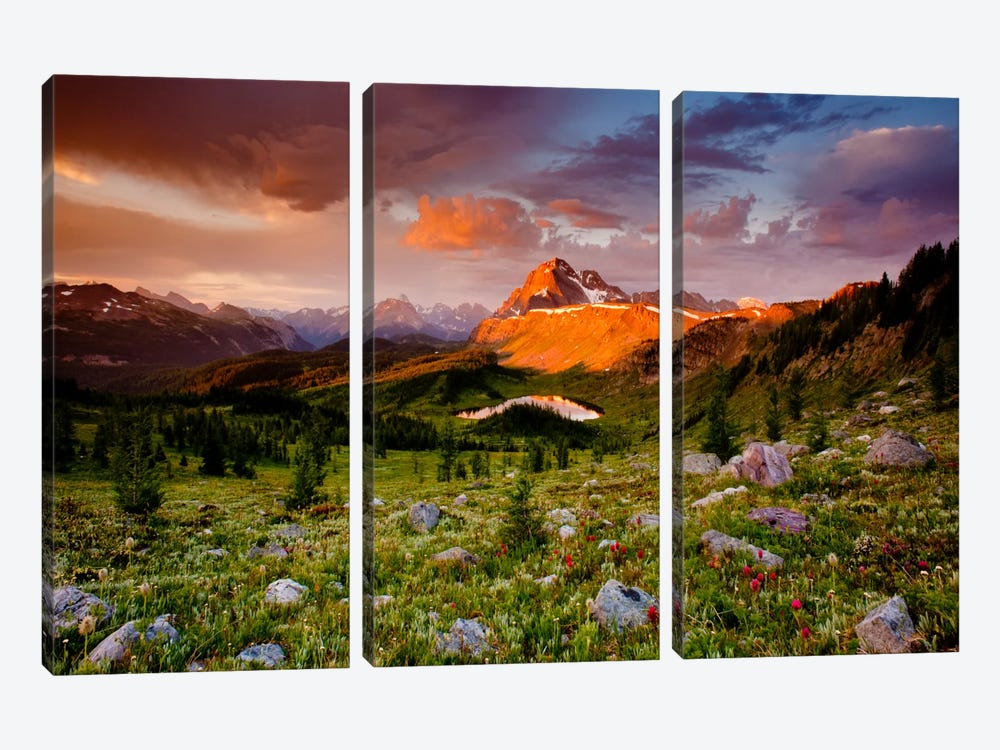 Emerging Glory by Dan Ballard 3-piece Canvas Wall Art