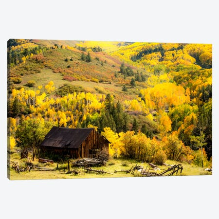 Fall Pallet Canvas Print #11569} by Dan Ballard Canvas Artwork