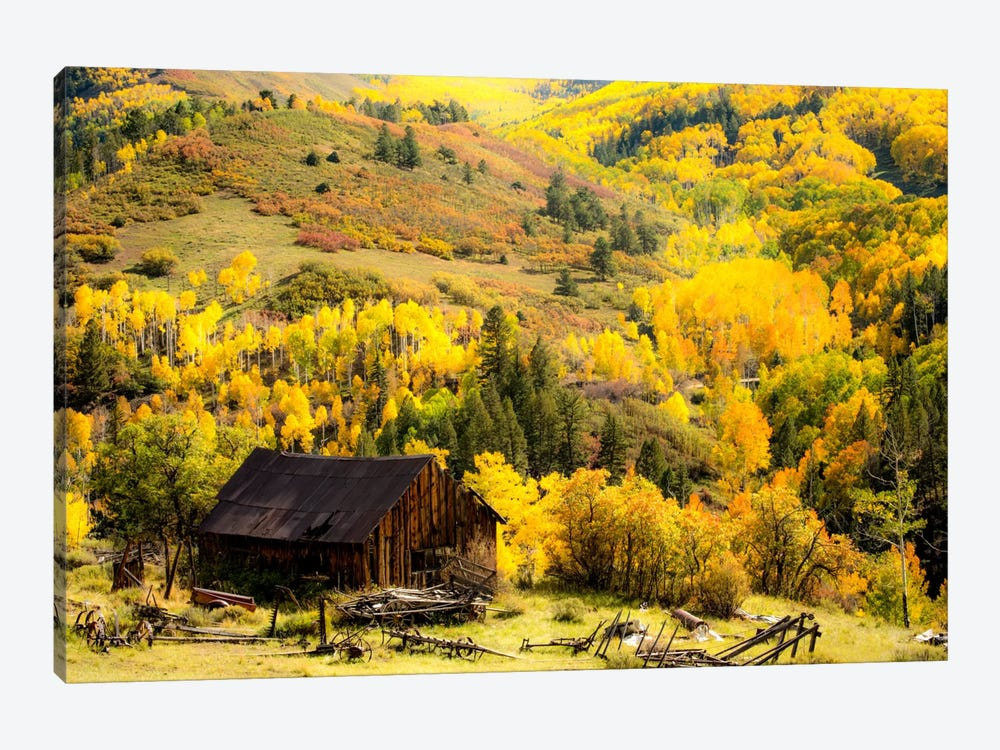 Fall Pallet by Dan Ballard 1-piece Canvas Art Print
