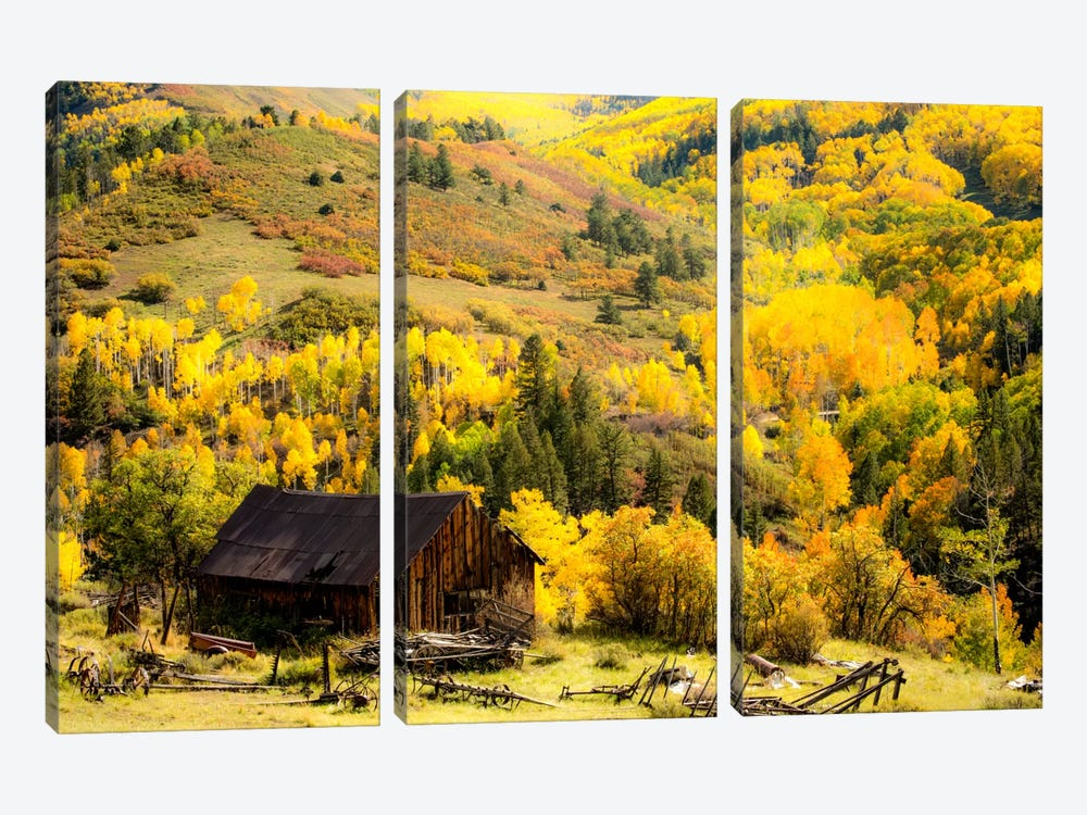 Fall Pallet by Dan Ballard 3-piece Canvas Print