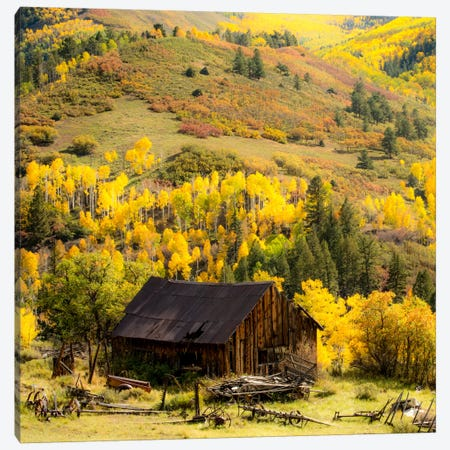 Fall Pallet #2 Canvas Print #11569B} by Dan Ballard Canvas Art Print