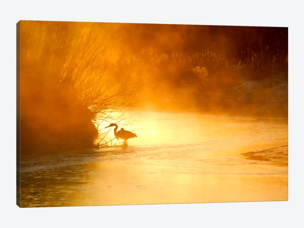 Glowing Mist by Dan Ballard 1-piece Art Print
