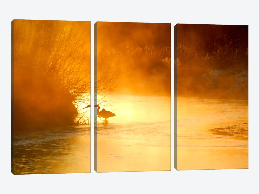 Glowing Mist 3-piece Canvas Art Print