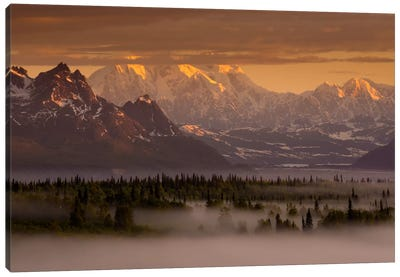 Moods of Denali Canvas Art Print