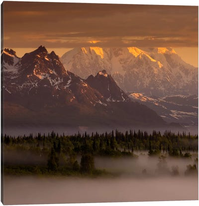 Moods of Denali #2 Canvas Art Print