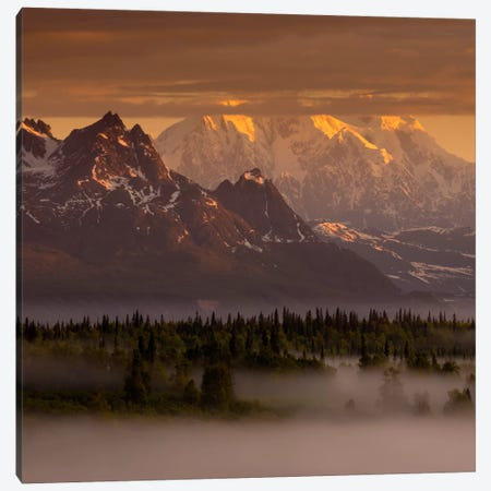 Moods of Denali #2 Canvas Print #11585B} by Dan Ballard Canvas Print