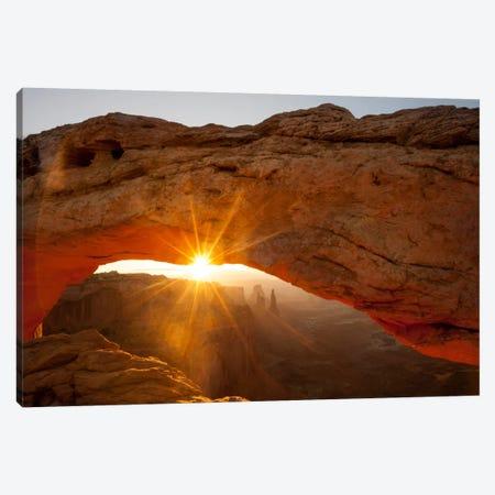 Mesa Arch Beauty Canvas Print #11587} by Dan Ballard Canvas Art Print