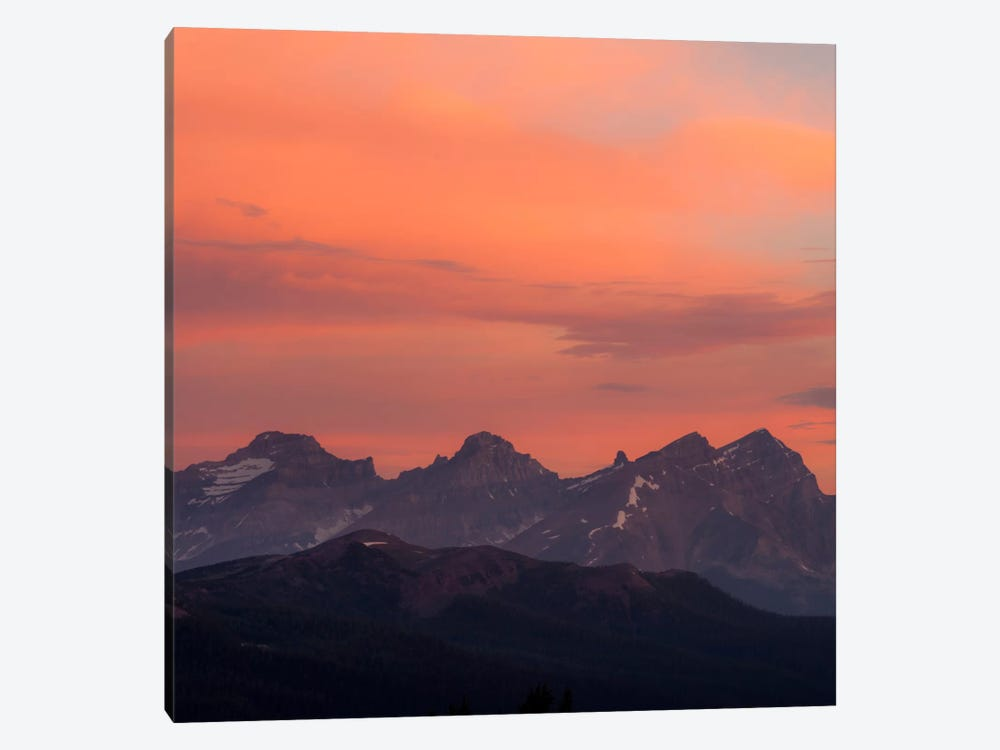 Painted Morning #2 by Dan Ballard 1-piece Canvas Art Print