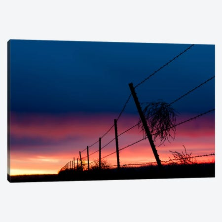 Tumble Weed Canvas Print #11610} by Dan Ballard Canvas Artwork