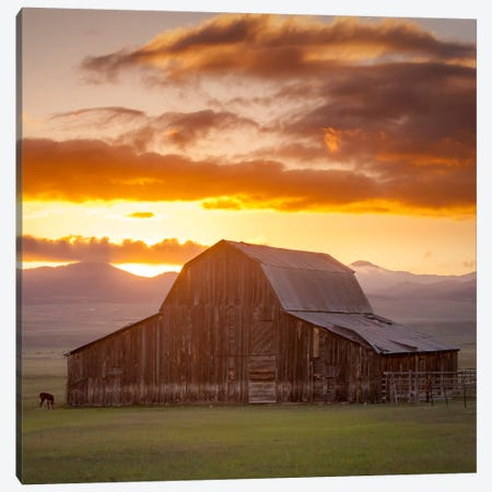 Wet Mountain Barn ll Canvas Print #11613B} by Dan Ballard Canvas Wall Art