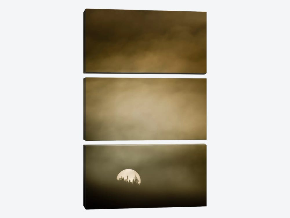 Wild Moon l by Dan Ballard 3-piece Canvas Art