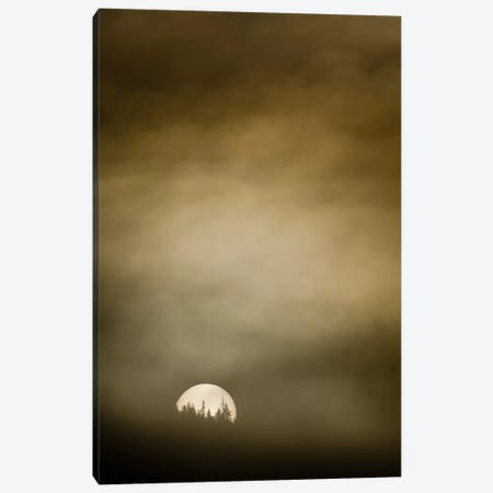 Wild Moon l Canvas Print #11615} by Dan Ballard Canvas Print