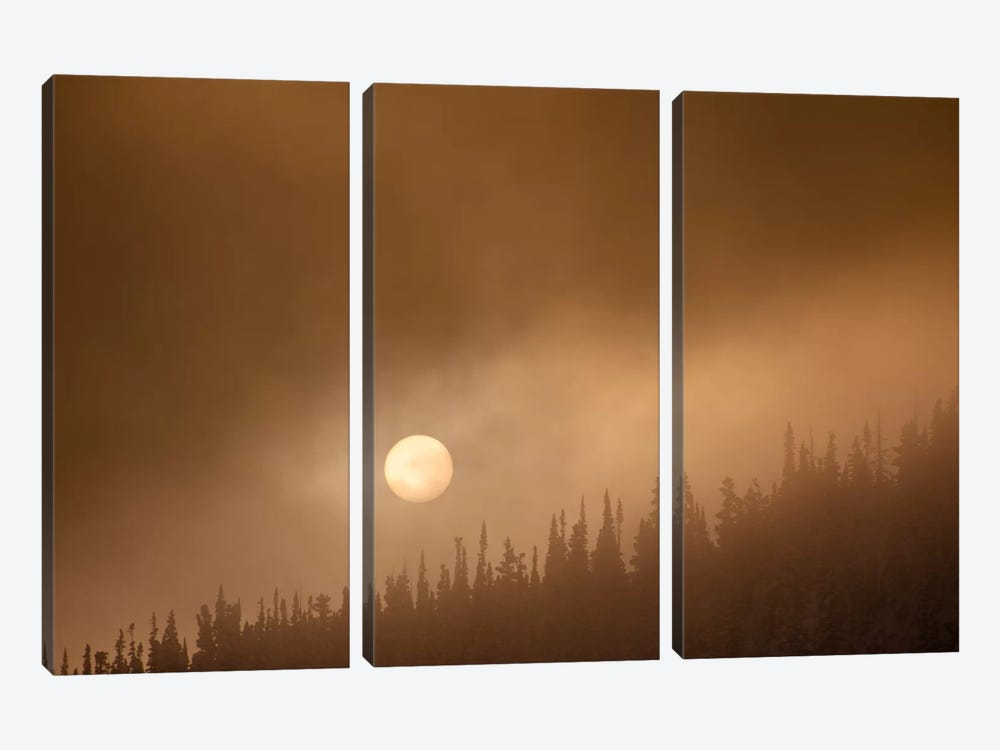 Wild Moon ll by Dan Ballard 3-piece Canvas Art Print