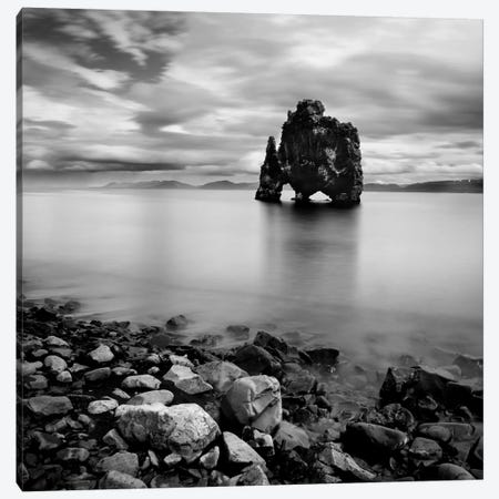 Iceland Dinosaur Canvas Print #11624} by Nina Papiorek Canvas Wall Art