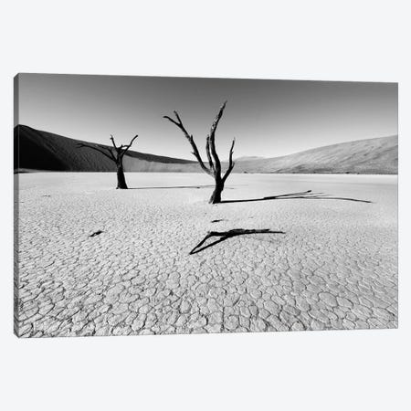 Namibia Dead Vlei Canvas Print #11639} by Nina Papiorek Canvas Wall Art