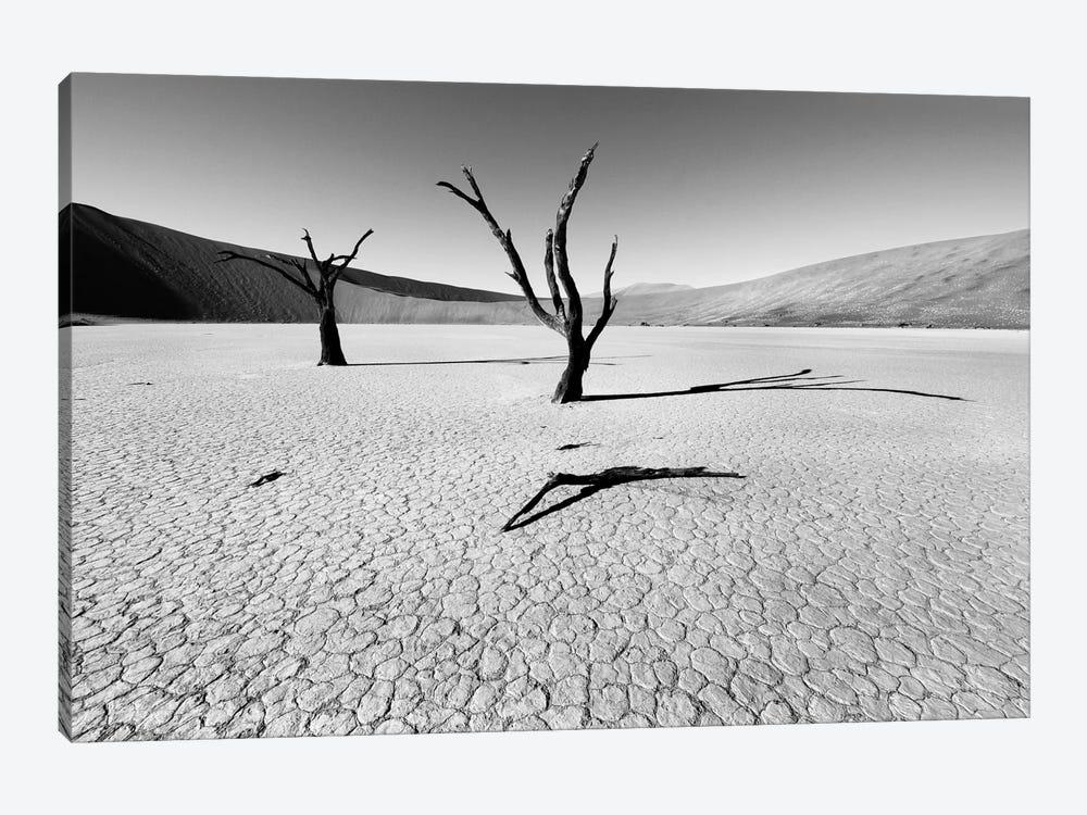 Namibia Dead Vlei by Nina Papiorek 1-piece Canvas Art