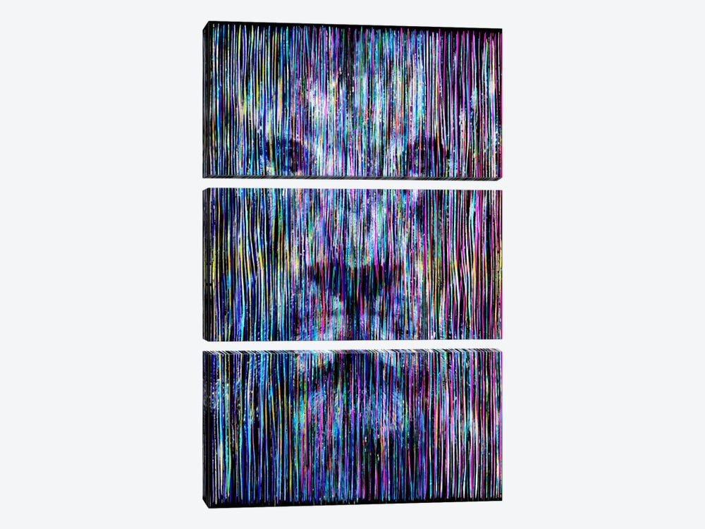 Threads by Ruud van Eijk 3-piece Canvas Artwork
