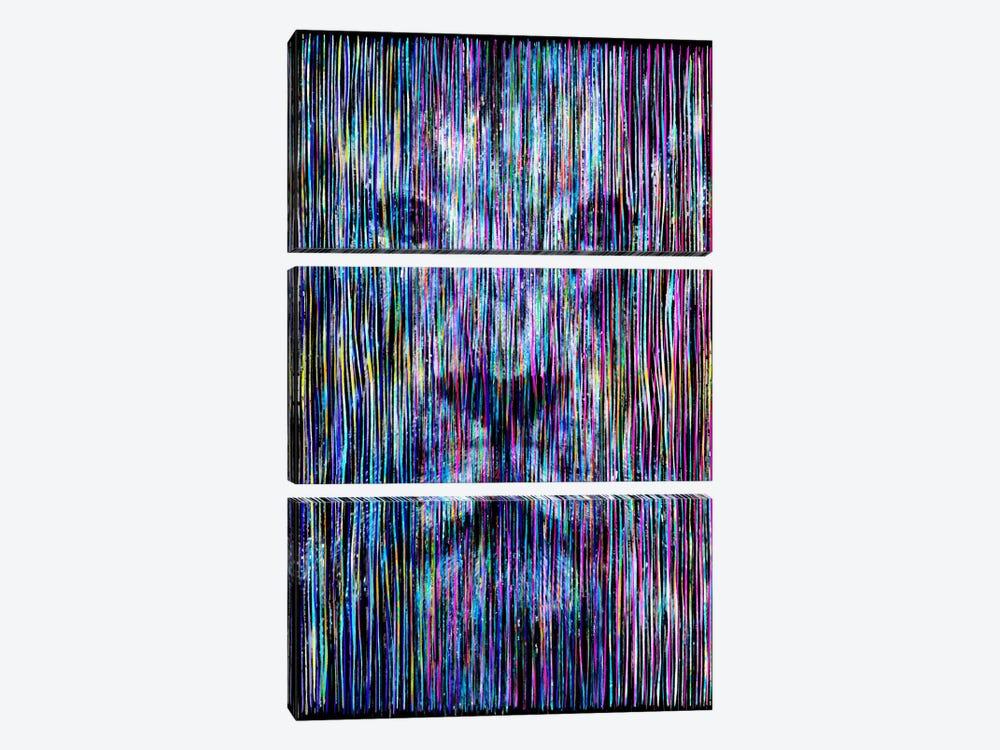 Threads by Ruud van Eijk 3-piece Canvas Artwork