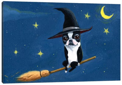 Witch On A Broom Canvas Art Print