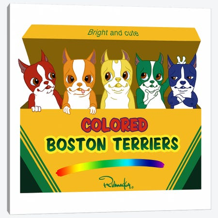 Box Of Terriers Canvas Print #12026} by Brian Rubenacker Canvas Wall Art