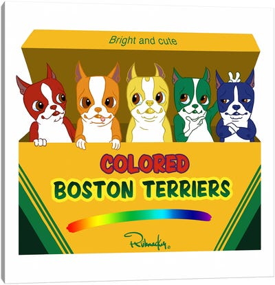 Box Of Terriers Canvas Art Print