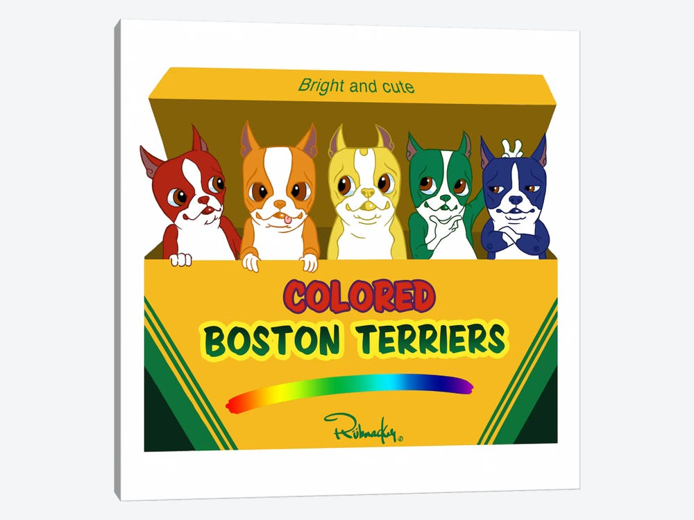 Box Of Terriers by Brian Rubenacker 1-piece Canvas Art