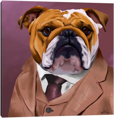 English Bulldog Dressed For A Night Out Canvas Art Print