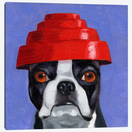 Boston Terriers Wearing Hats XIII (Devo) Canvas Print #12036} by Brian Rubenacker Canvas Print