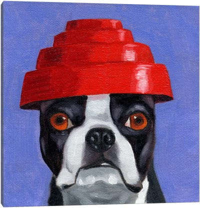 Boston Terriers Wearing Hats XIII (Devo) Canvas Art Print