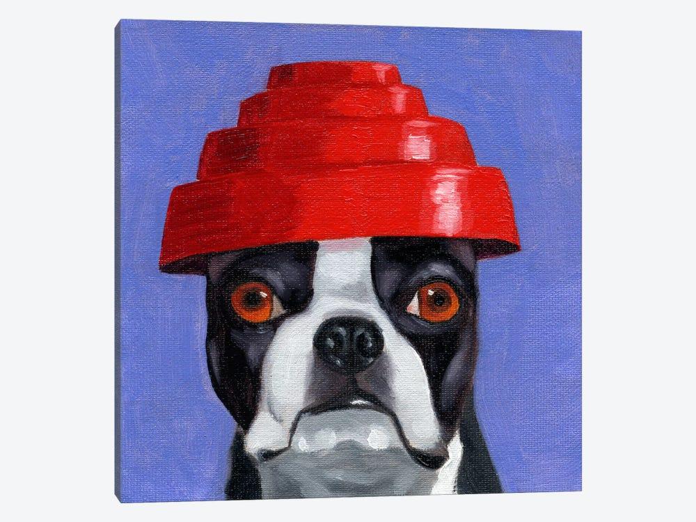 Boston Terriers Wearing Hats XIII (Devo) by Brian Rubenacker 1-piece Canvas Print