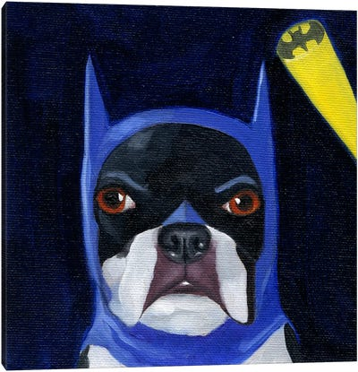 Boston Terriers Wearing Hats XVI (Batman) Canvas Art Print
