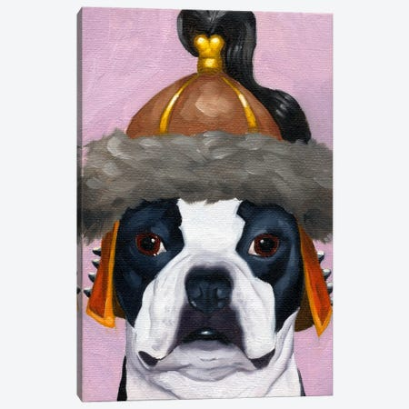 Boston Terriers Wearing Hats (Genghis Khan) Canvas Print #12039} by Brian Rubenacker Canvas Wall Art