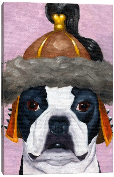 Boston Terriers Wearing Hats (Genghis Khan) Canvas Art Print