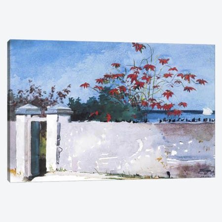 A Wall, Nassau 1898 Canvas Print #1239} by Winslow Homer Canvas Art Print