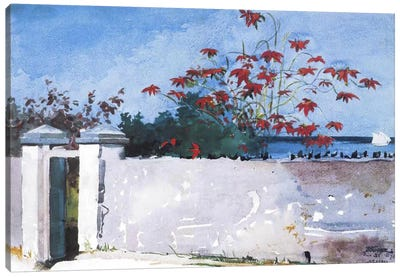 A Wall, Nassau 1898 by Winslow Homer Canvas Art Print