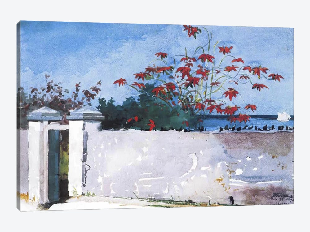 A Wall, Nassau, 1898 by Winslow Homer 1-piece Canvas Print