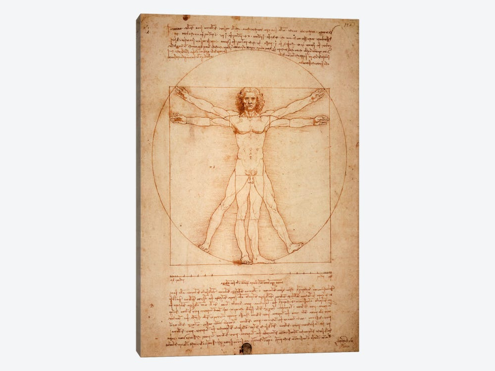 Vitruvian Man, c. 1490 by Leonardo da Vinci 1-piece Canvas Art Print