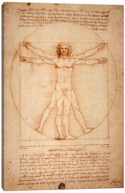Vitruvian Man, c. 1490 Canvas Art Print