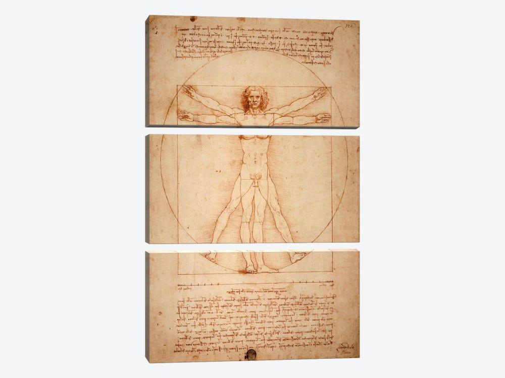 Vitruvian Man, c. 1490 by Leonardo da Vinci 3-piece Art Print