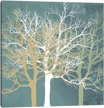 Tranquil Trees Canvas Art Print