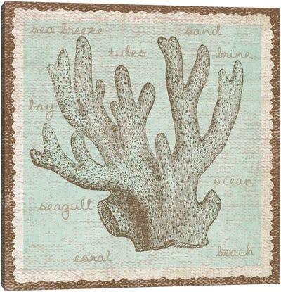 Coral Canvas Print #13301