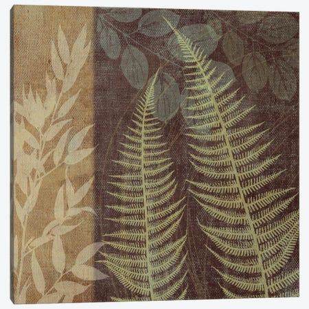 Ferns I Canvas Print #13324} by Erin Clark Canvas Artwork